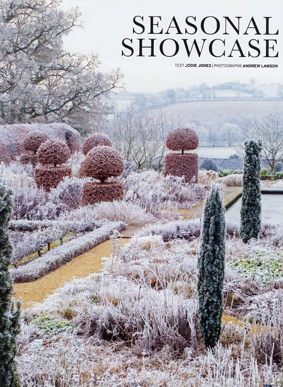 Blog_1401_house___garden_seasonal_showcase_reduced