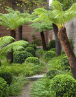 Thumb_05_london_garden_mm_001