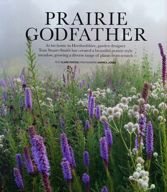 Blog_1407_house___garden_prairie_godfather_for_blog