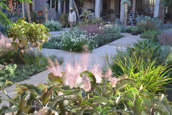 Le jardin secret marrakech vi tom stuart smith for Le jardin secret livre