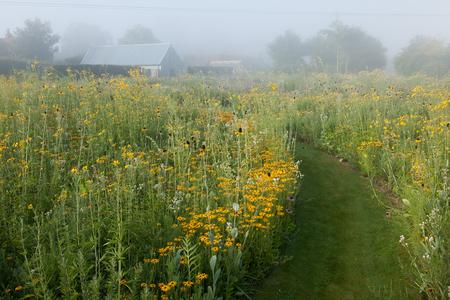 Gallery_low_05_toms_meadows___prairies__-andrea_jones