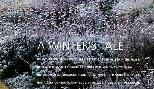 Gallery_low_04-winters-tale20130821-2-a5rsru