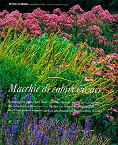 Gallery_low_0808_gardenia_macchie_di_colori_vivaci_72dpi