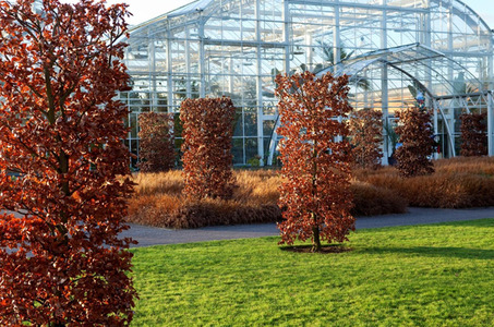 Gallery_low_1401_acer_landscape_tom_stuart-smith_and_wisley_garden_72dpi