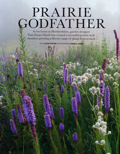 Gallery_low_1407_house___garden_prairie_godfather_72dpi